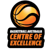 BA Centre of Excellence